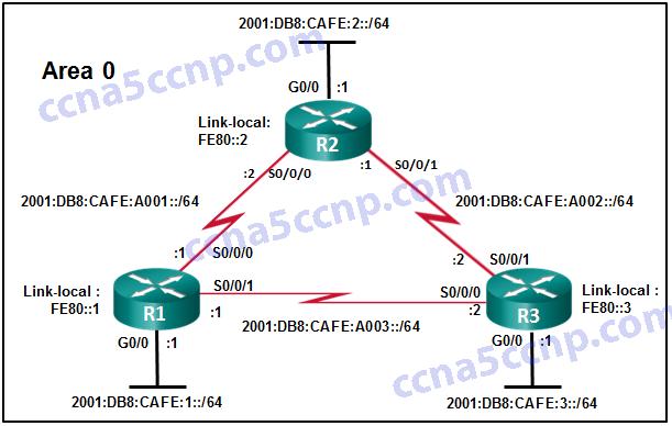 CCNA1 Practice Final v5.03 007
