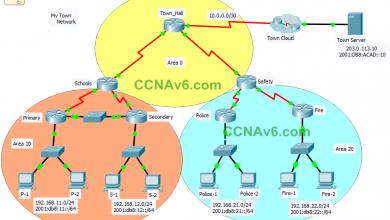 ScaN OSPF Practice Skills Assessment - PT - TYPE C